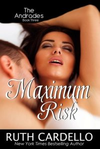 Maximum_Risk_Book3