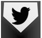 baseball_twitter