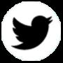 twitter-white