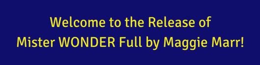 Mister WonderFULL - Release- yellow