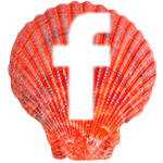 Sea Shell - FB
