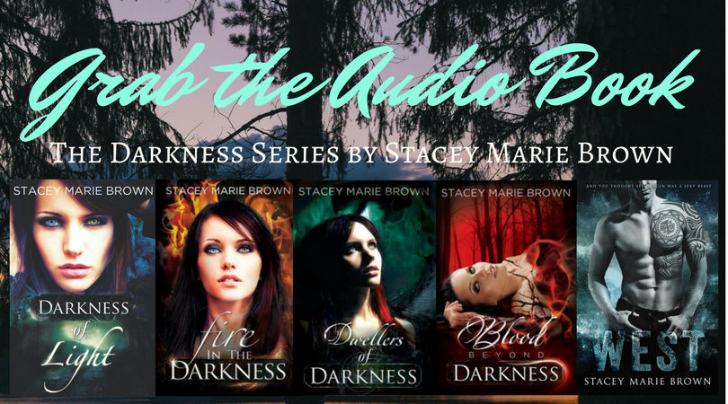 AUDIO BOOKS DARKNESS SERIES (1).png