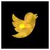 twitter gold