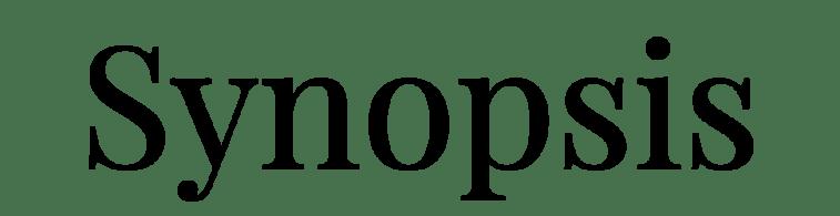 SMB SYNOPSIS